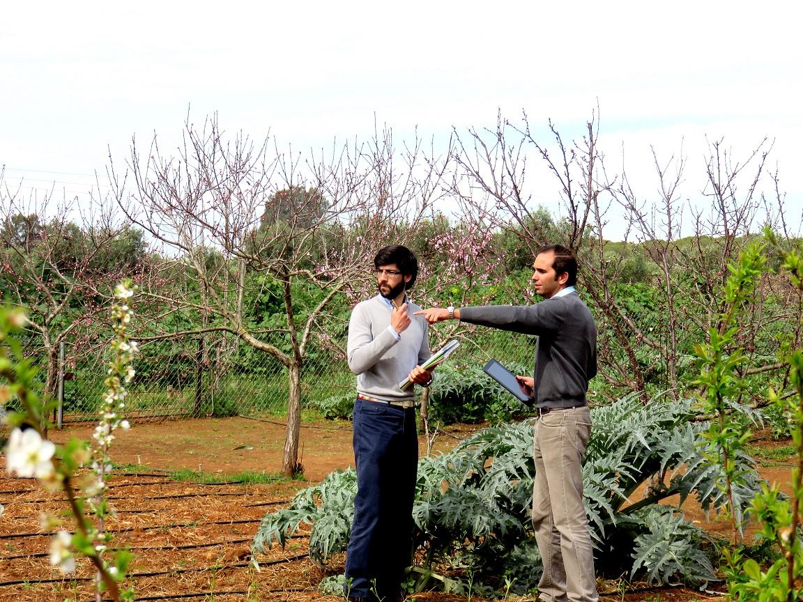 Registro de operadores ecológicos en Castilla y León
