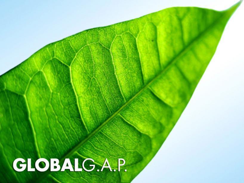 Reunión Grupo Nacional de GLOBALGAP