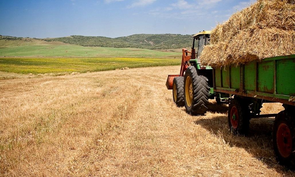 Convocatoria de Ayudas para la Agricultura Ecológica en Castilla la Mancha 2016
