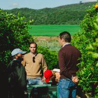 Aumento de la Producción Ecológica en España