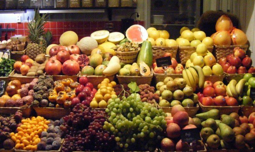 Apoyo a la difusión de la agricultura ecológica en Castilla y León