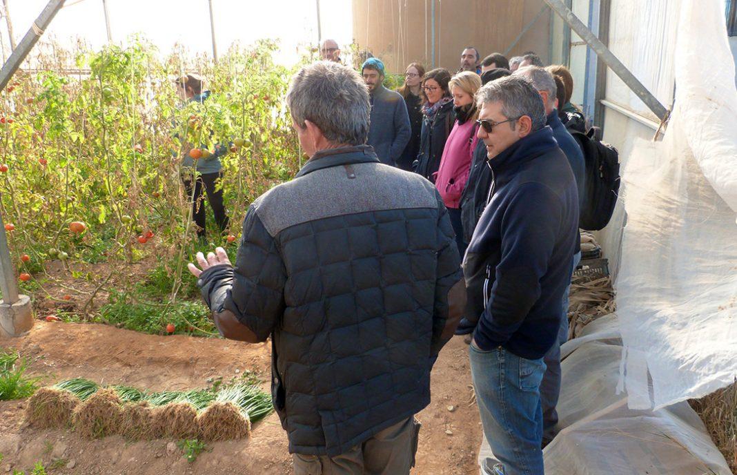 Agricultura Ecológica para la adaptar los cultivos al cambio climático