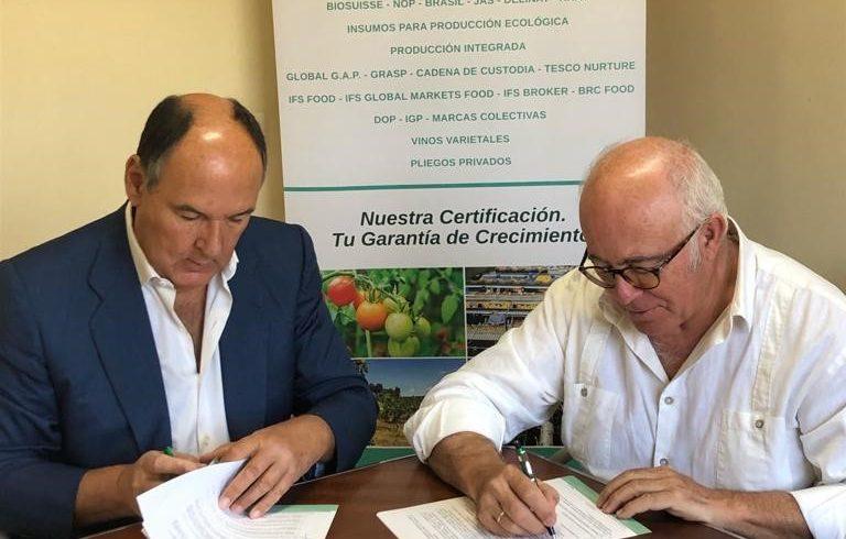 """Sohiscert firma un convenio de colaboración con el Consejo Regulador de las Indicaciones Geográficas Protegidas """" Aceituna Manzanilla de Sevilla"""" / """"Aceituna Gordal de  Sevilla"""""""