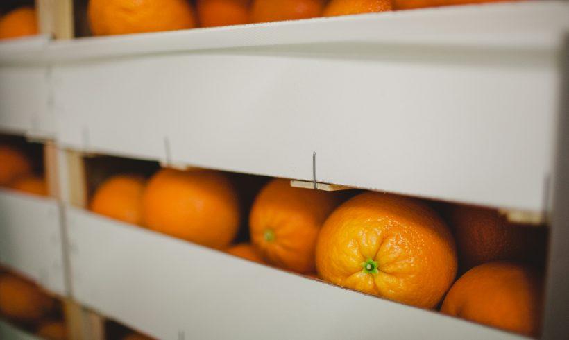 La puerta de entrada al mercado para frutas y hortalizas