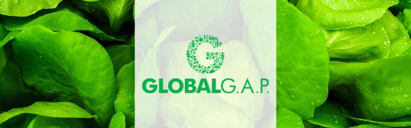 La certificación GlobalGAP