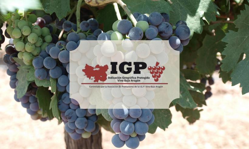 SOHISCERT obtiene la autorización para certificar los Vinos de la Tierra del Bajo Aragón