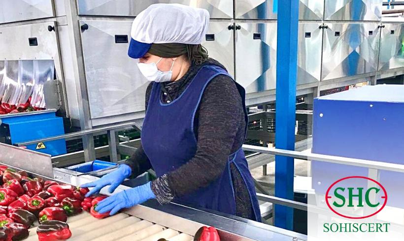 SOHISCERT reforzará a las Industrias Agroalimentarias frente a los riesgos del COVID-19