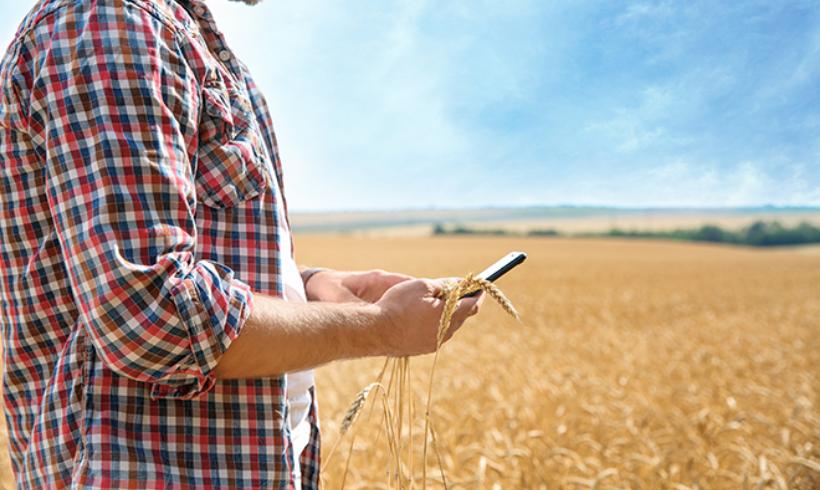 Aragón convoca subvenciones para la incorporación de jóvenes a la agricultura y la modernización de explotaciones