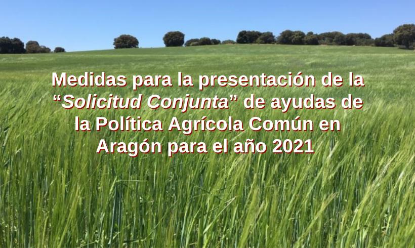 """Medidas para la presentación de la """"Solicitud Conjunta"""" de ayudas de la Política Agrícola Común en Aragón para el año 2021"""