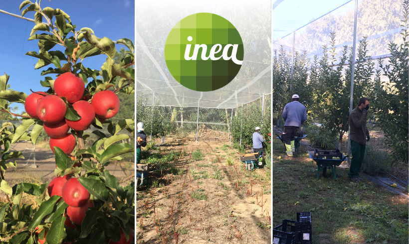 INEA – La Escuela Universitaria de Ingeniería Agrícola de Valladolid que apuesta por la Agricultura Ecológica