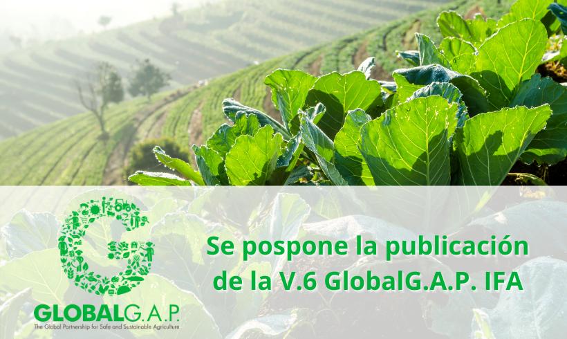 Se pospone la publicación de la V.6 GlobalG.A.P. IFA